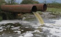 Обзор экологических проблем реки Обь и действий по их устранению