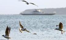 Условия расположения, порядок использования и охраны внутренних морских вод
