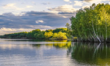 Расширяем кругозор: где находится река Волга