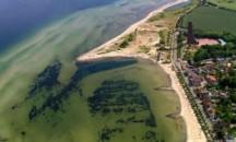 Какова соленость воды Балтийского моря и что влияет на этот показатель?