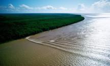 От каких факторов зависит характер течения реки Амазонка?