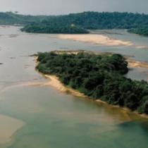 Какие основные источники питания реки Амазонка?