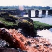 Актуальная проблема — загрязнение пресных вод