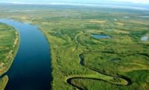 Какова общая длина реки Лена в километрах?