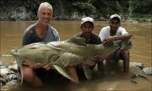 Какие существуют хозяйственные возможности для использования реки Амазонка?