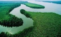 Чем кроме своих размеров и опасных крокодилов известна река Нил?