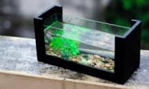 В каком случае нужен и как осуществляется подогрев воды в аквариуме?